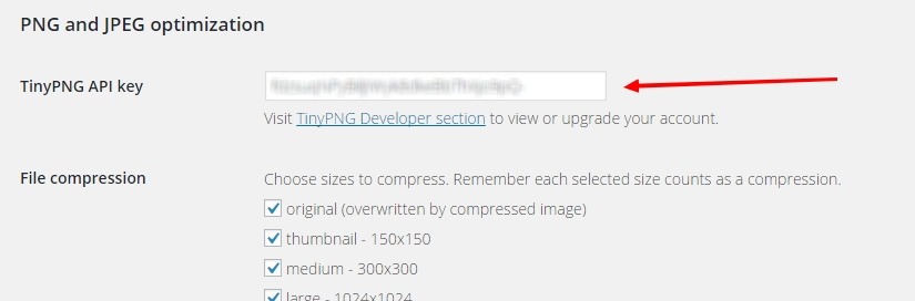tiny-png-compression-image-wordpress